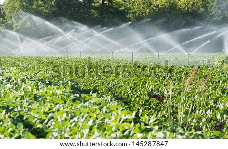 Irrigation system on green field - stock photo