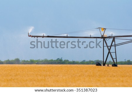 Irrigation system on the wheat field on sunny summer day. - stock photo