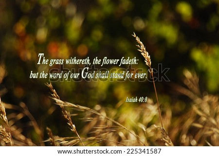 Bible Verses Stock Photos Images Amp Pictures Shutterstock
