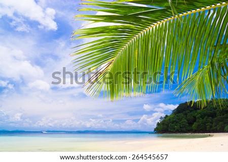 Island Lagoon Under Trees  - stock photo