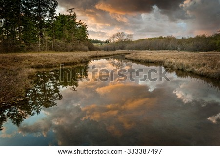 Island Slough at Sunset. A wetland on Lummi Island in the Puget Sound area of the Pacific Northwest in western Washington state.  - stock photo