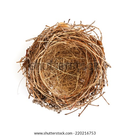 Isolated Bird Nest on White - stock photo