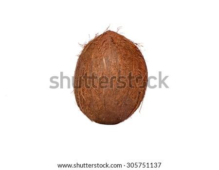 Isolated coconut - stock photo