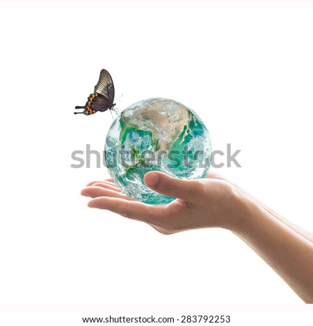 Isolated hands holding green planet with butterfly on white background : World environment and hydrography concept: Elements of this image furnished by NASA   - stock photo