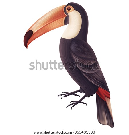Isolated illustration of toucan bird.Tropical beautiful background - stock photo
