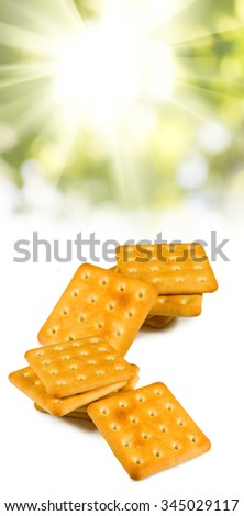 isolated image of a tasty cookie closeup - stock photo