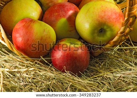 Isolated image of ripe apples - stock photo