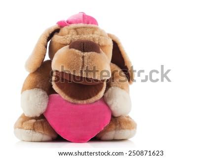Isolated plush toy dog on white background - stock photo