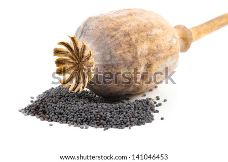 Isolated poppy head and seeds on white background - stock photo