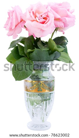 Isolated Rose in Flower-vase - stock photo