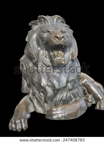 Isolated sitting lion on black background - stock photo