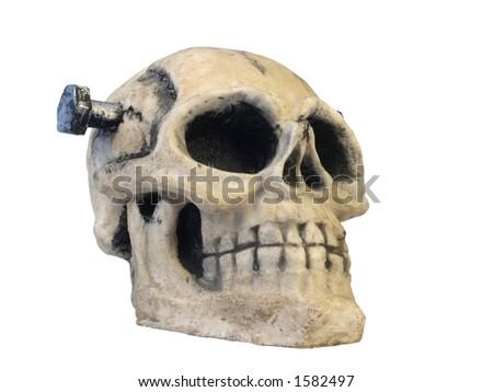 Isolated Skull - stock photo