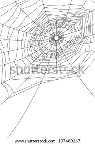 isolated spider web or cobweb background for halloween. - stock photo