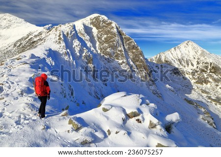 Isolated woman admires the landscape from snow covered mountain - stock photo