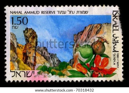 ISRAEL-CIRCA 1993:A stamp printed in ISRAEL shows image of the The Amud stream, also known as the Wadi Amud, is a stream in the Upper Galilee which spills into the Sea of Galileel, circa 1993. - stock photo