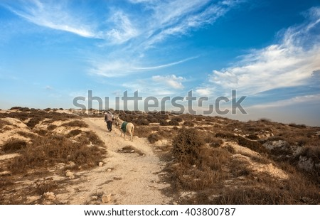 Israel, Palestine, a shepherd, Magi, donkey, desert, rocky, traveler, road, way, path, route, highway, journey, pathway, rocky, difficult path, Arab, Israelite, religion, Christianity, Jesus, Joseph - stock photo