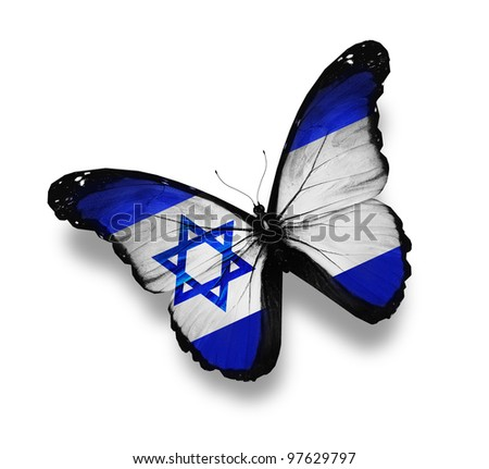 Israeli flag butterfly, isolated on white - stock photo
