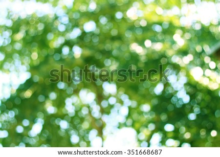 It is Abstract green blurred natural background. - stock photo