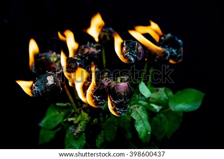 It's over! Bouquet of pink roses in vase on fire for concept of ending a relationship - stock photo