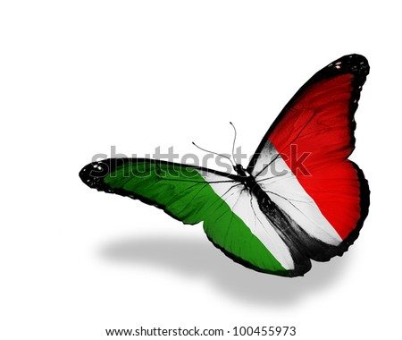Italian flag butterfly flying, isolated on white background - stock photo