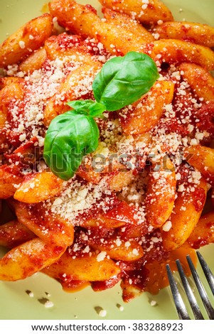 Italian gnocchi with tomato sauce and cheese on a plate - stock photo