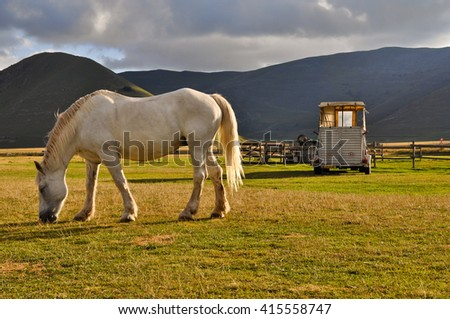 Italian Umbrian-Marchean Apennines landscapes, view plateau of Castelluccio with horse and car, Umbria,Italy - stock photo