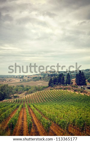 Italy,Tuscany in Autumn, stormy clouds  sky and vineyard - stock photo