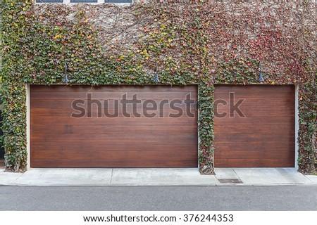Ivy covered brown three car garage doors - stock photo