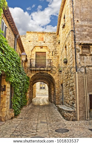 Ivy covered wall on a narrow street in Peratallada, Catalonia, Spain - stock photo