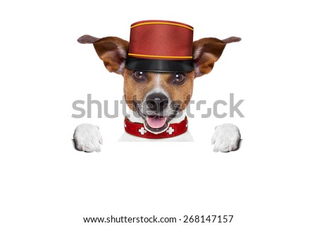 jack russell bellboy dog behind a blank and empty banner or placard at hotel, where pets are welcome and allowed,isolated on white background - stock photo