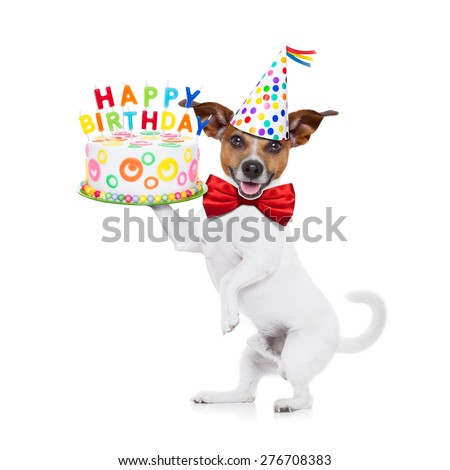 jack russell dog holding a happy birthday cake with  candles , red tie and party hat on , isolated on white background - stock photo