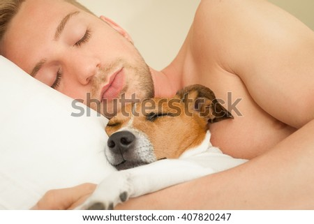 jack russell dog  in bed sleeping with owner close together and cuddling  - stock photo