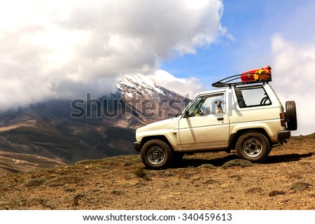 Jack Russell Terrier Female Dog Travels In The Andes Mountains In A 4X4 Old Jeep  - stock photo