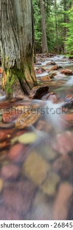 Jackson Creek - stock photo