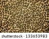 Jaguar skin background - stock photo