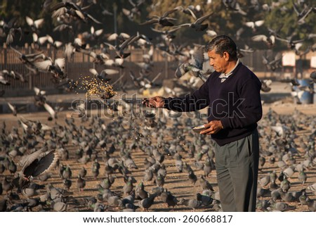 JAIPUR , INDIA -DECEMBER 08, 2012 :Indian men are feeding the birds in the morning at the side of the road . - stock photo