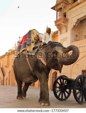 JAIPUR, INDIA � MARCH 3: An unidentified man riding an elephant into Agra Fort on March 3, 2012 in Jaipur, Rajasthan, Northern India. Amber Fort overlooks Maota Lake and is 11km from Jaipur. - stock photo