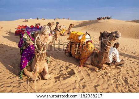 JAISALMER, INDIA - FEB 26: Thar desert on Feb 26, 2013 in Jaisalmer, India. Local people and their camel rest on Thar desert in evening time. - stock photo