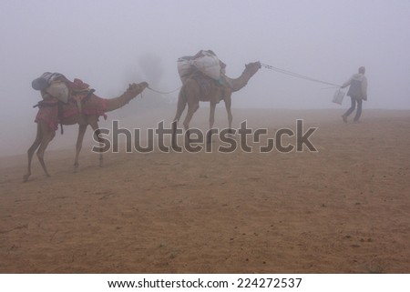 JAISALMER, INDIA-FEBRUARY 18: Unidentified man leads camels through the Thar desert on February 18, 2011 in Jaisalmer, India. Camel safari in That desert are very popular among tourists from Jaisalmer - stock photo