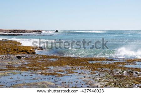 Jake's Point Indian Ocean seascape with sandstone rock and reef heron in Kalbarri, Western Australia/Heron Flying over Beach Reef/Jake's Point, Kalbarri, Western Australia - stock photo