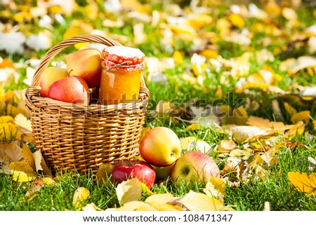Jam in glass jar and basket full of fresh juicy apples in autumn garden - stock photo