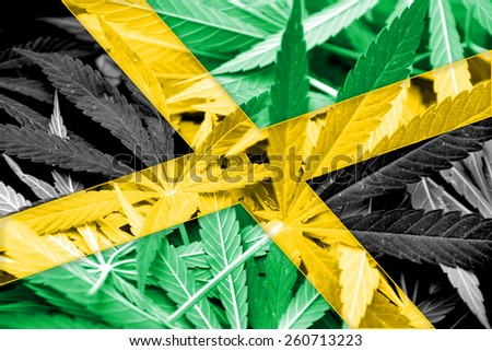 Jamaica Flag on cannabis background. Drug policy. Legalization of marijuana - stock photo