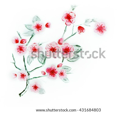 Japanese cherry - cherry watercolor - stock photo