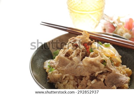Japanese food, simmered beef and onion on rice Gyudon - stock photo