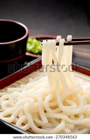 japanese food udon - stock photo