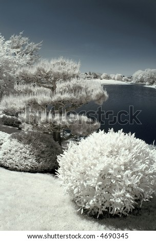 Japanese garden by the water in infrared. - stock photo