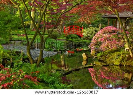 Japanese garden in spring - stock photo