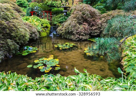 Japanese garden. Small quiet pond, overgrown with lilies. Scenic decorative park Butchart Gardens on Vancouver Island, Canada - stock photo