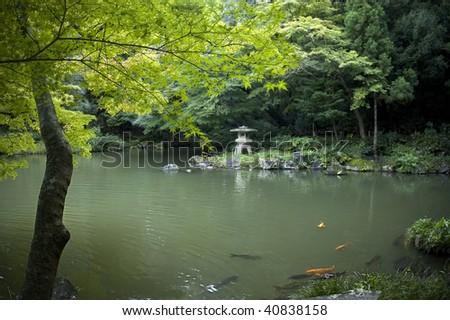 Japanese garden with koi pond, carps and lantern. Horizontal. - stock photo
