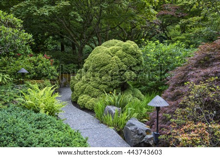Japanese garden with pathway and lighting, sculpted bush - stock photo